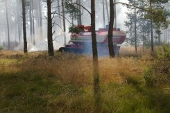 Loeschpanzer Waldbrand Baruth 2013-07 (3)