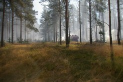 Loeschpanzer Waldbrand Baruth 2013-07 (6)