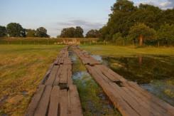 Hochwasser - Flut 2013 (10)