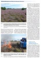 Offenland-Management auf Flaechen des Nationalen Naturerbes